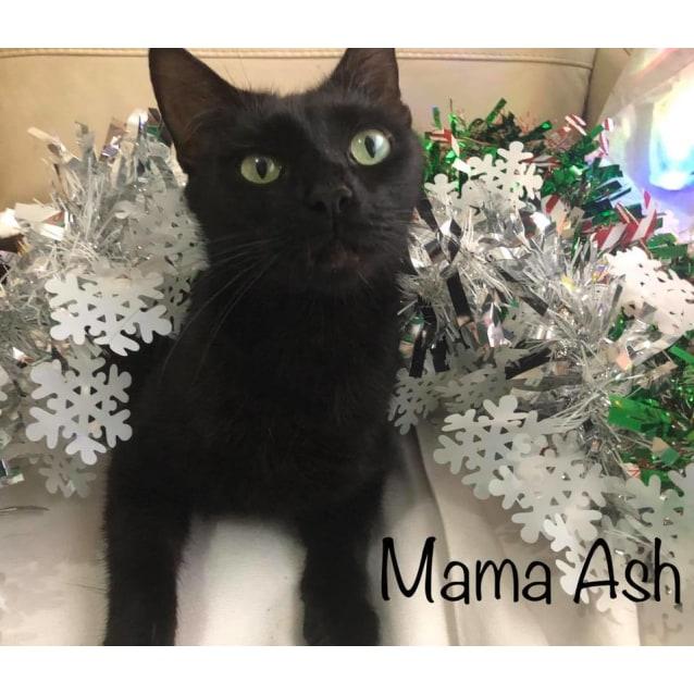 Photo of Mama Ash