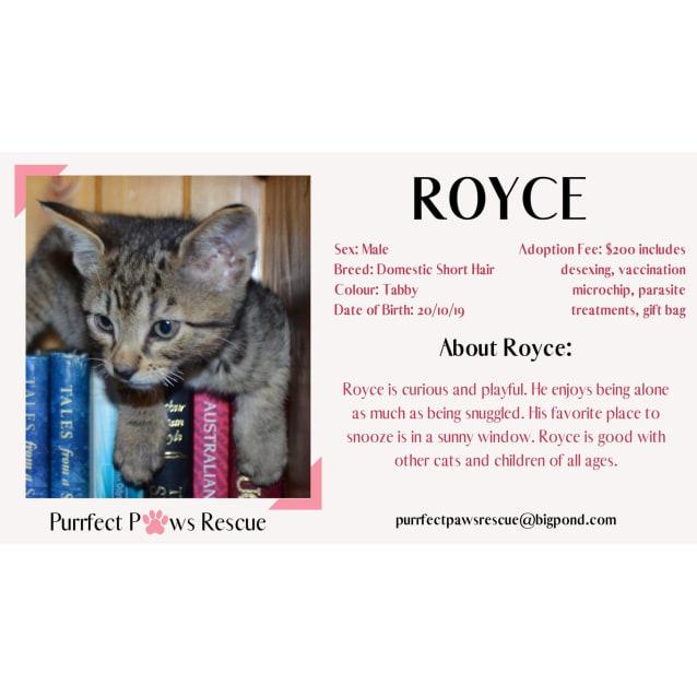 Photo of Royce