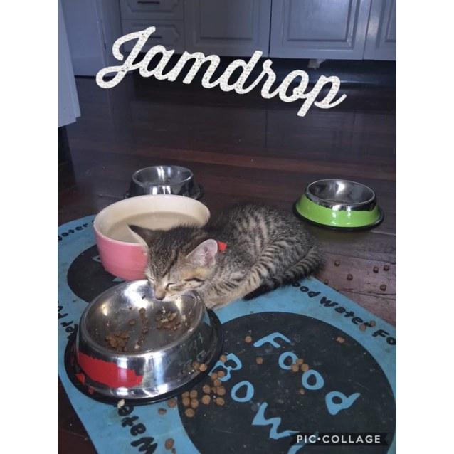 Photo of Jamdrop