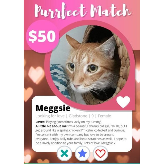 Photo of Meggsie