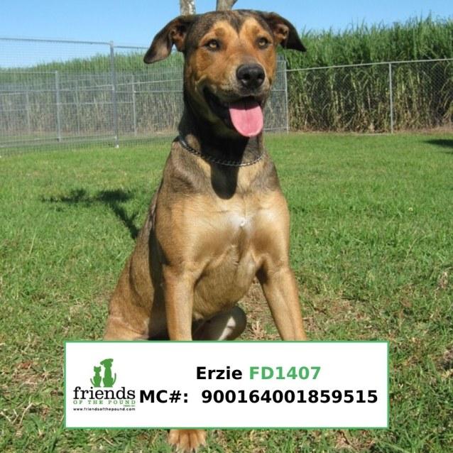 Photo of Ezrie