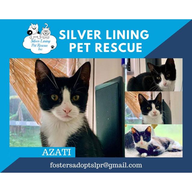 Photo of Azati