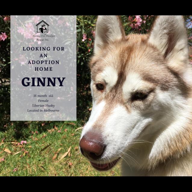 Photo of Ginny