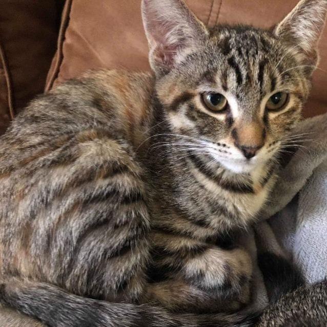 Photo of Ziri