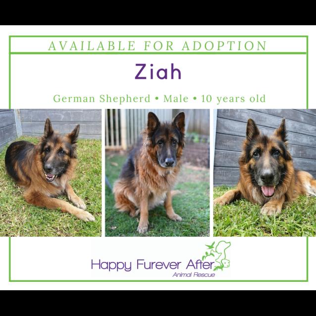 Photo of Ziah