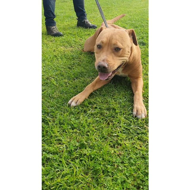 Photo of Molly Dl2484