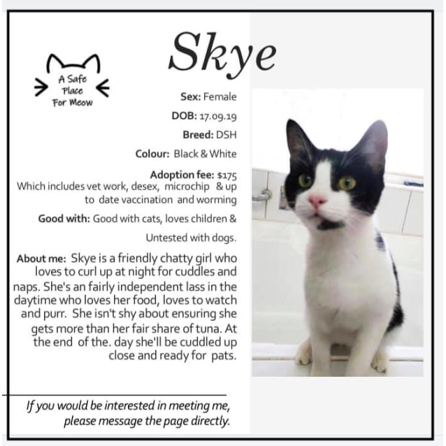 Photo of Skye