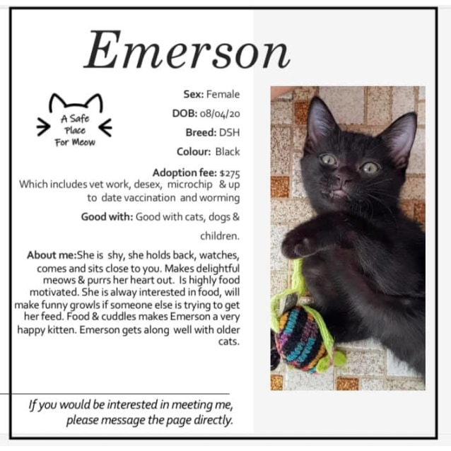 Photo of Emerson