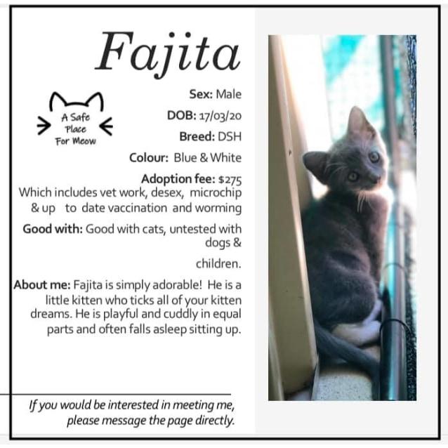 Photo of Fajita