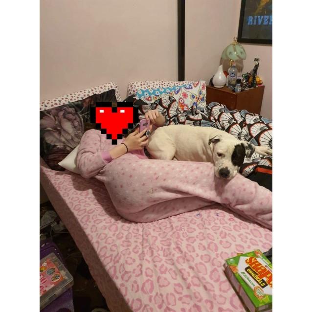Photo of Chiko