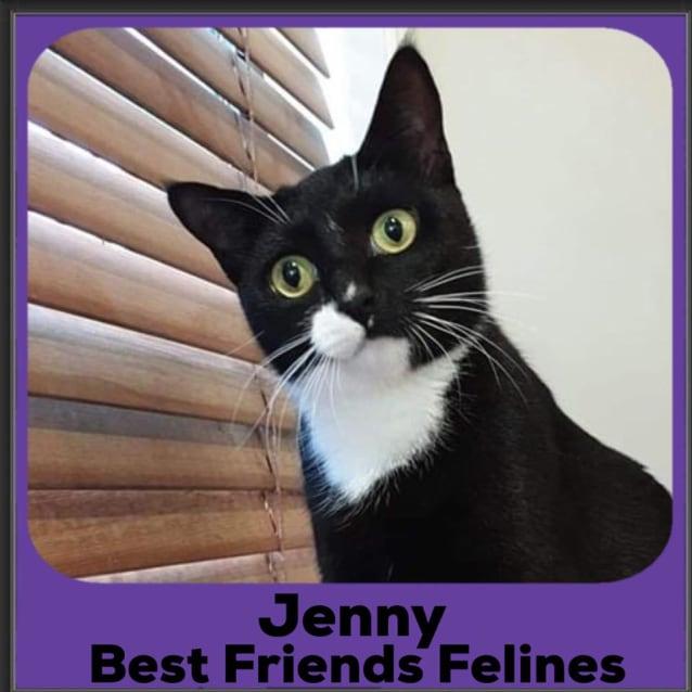 Photo of Jenny