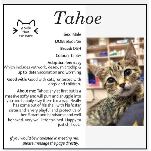 Photo of Tahoe