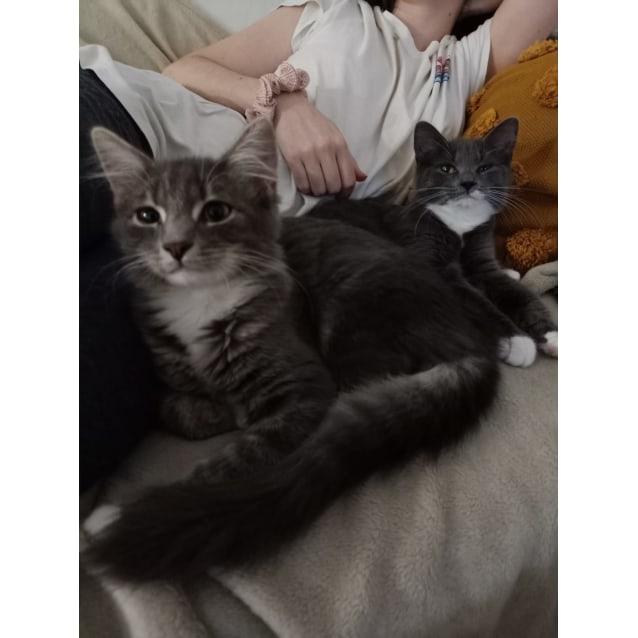 Photo of Leia