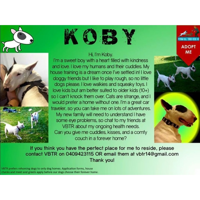 Photo of Koby