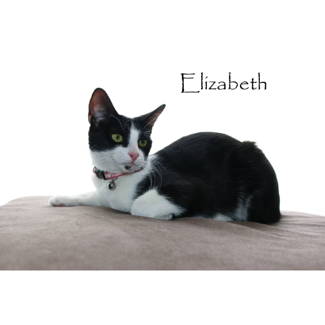 Photo of Elizabeth