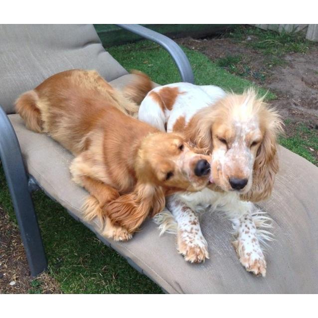 Photo of Penny & Sandy
