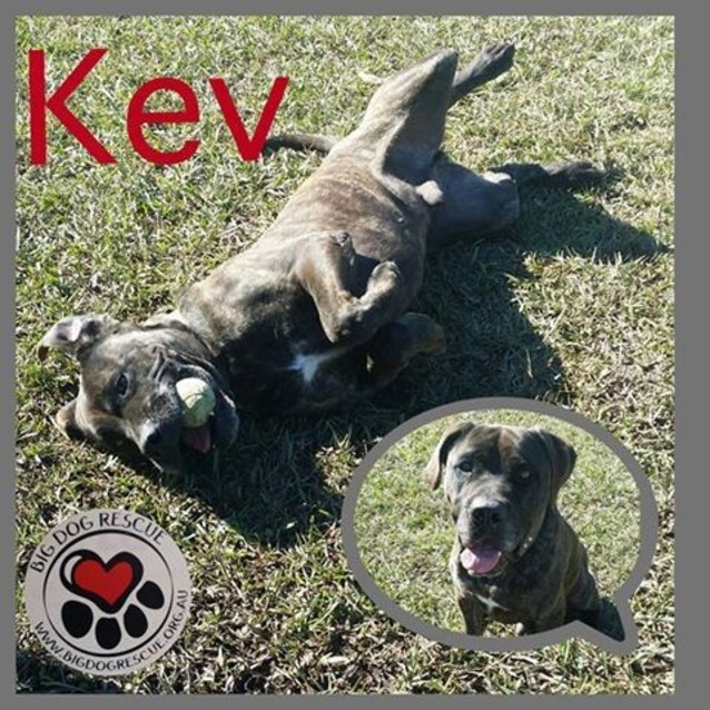Photo of Kev