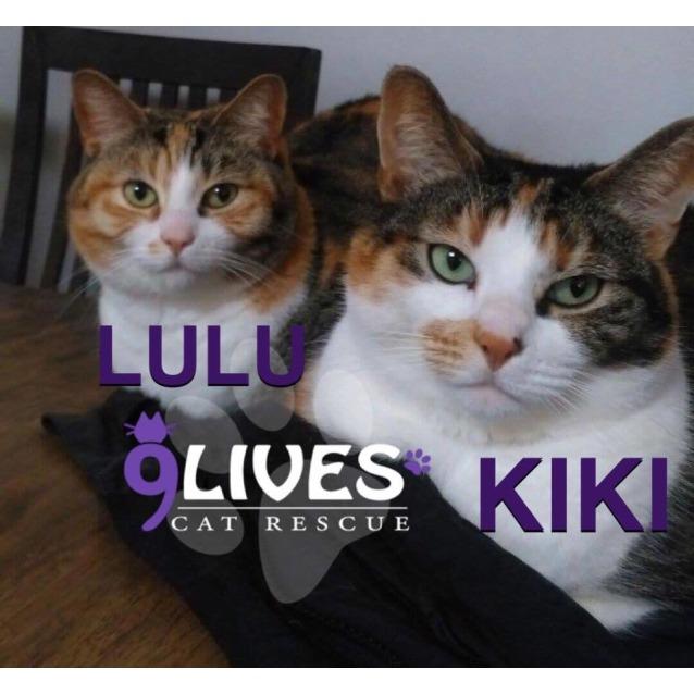 Photo of Lulu & Kiki