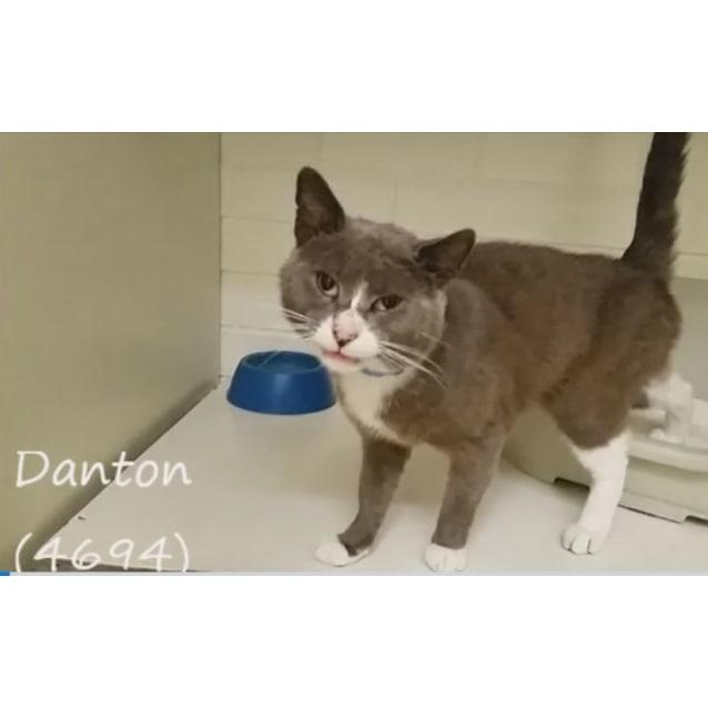 Photo of Danton (4694)