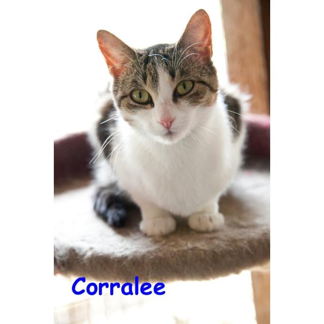 Photo of Coralee