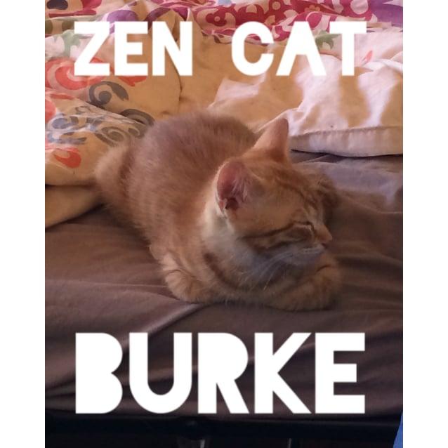 Photo of Burke
