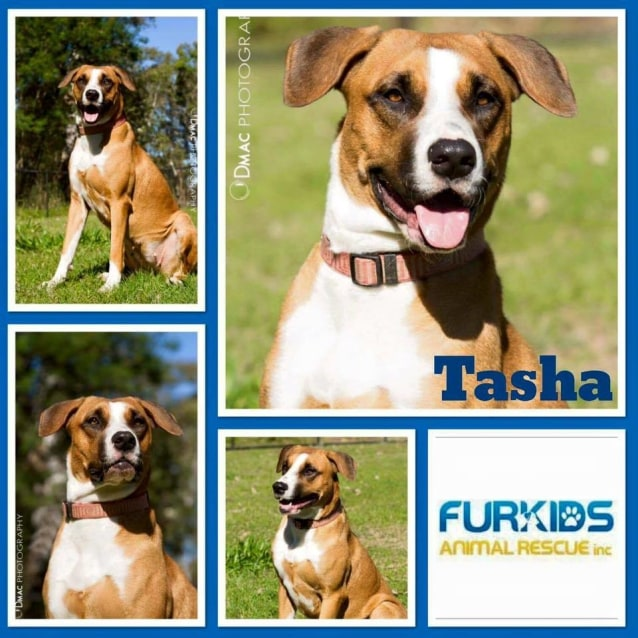 Photo of Tasha