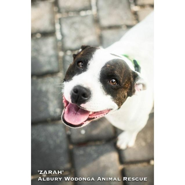 Photo of Zarah