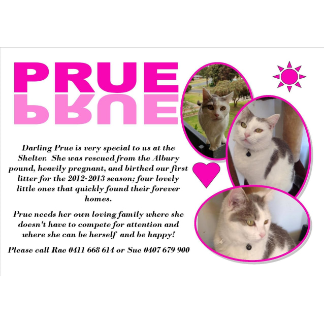 Photo of Prue