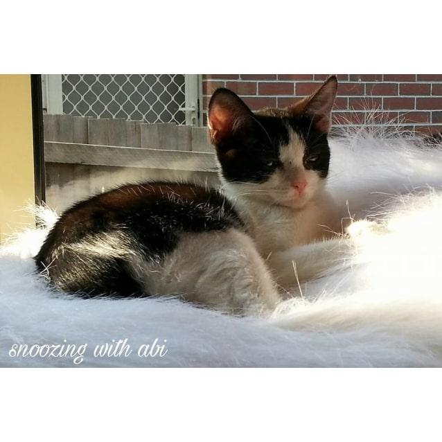 Photo of Abi