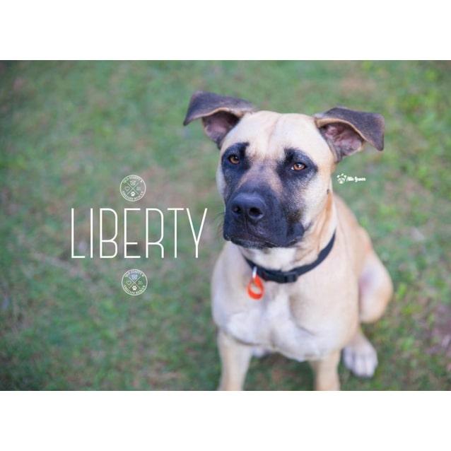 Photo of Liberty