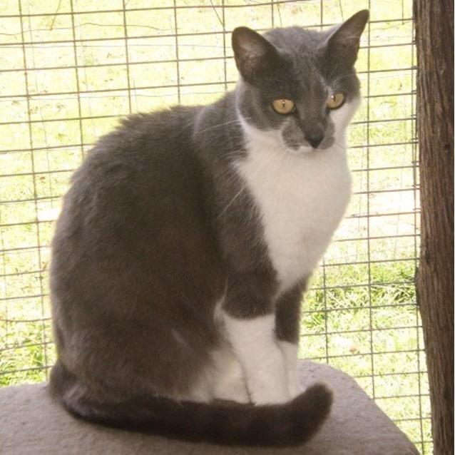 Photo of Keisha
