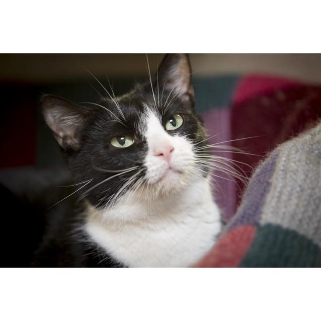 Photo of Celia