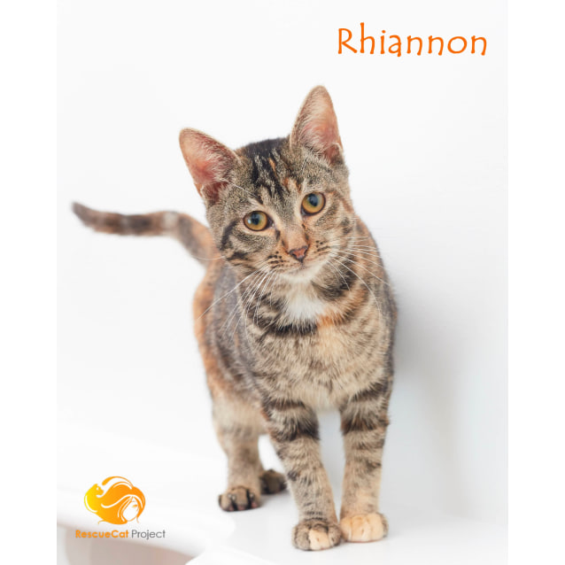 Photo of Rhiannon