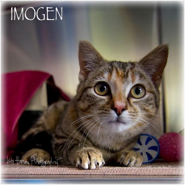 Photo of Imogen