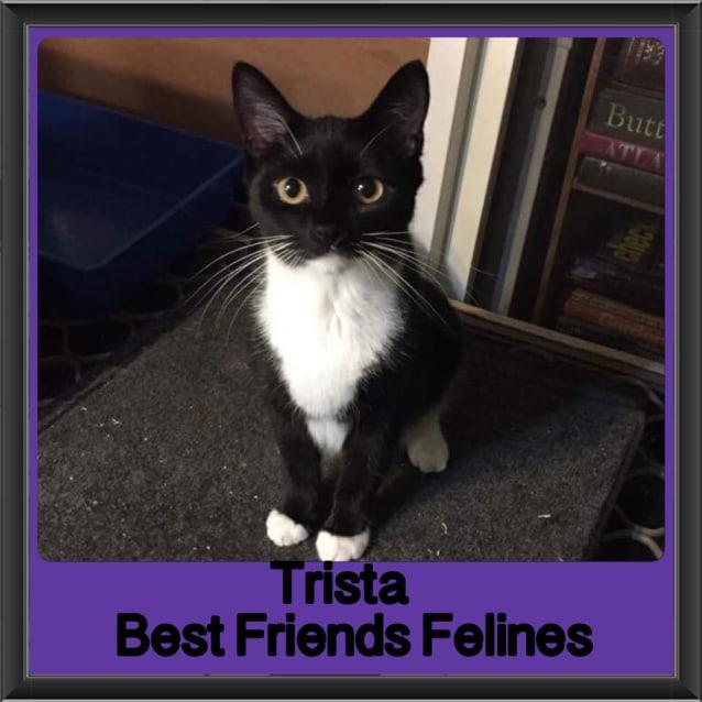 Photo of Trista