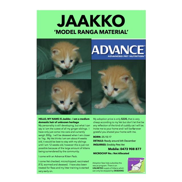 Photo of Jaakko