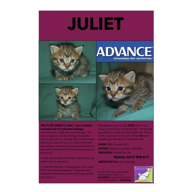 Photo of Juliet