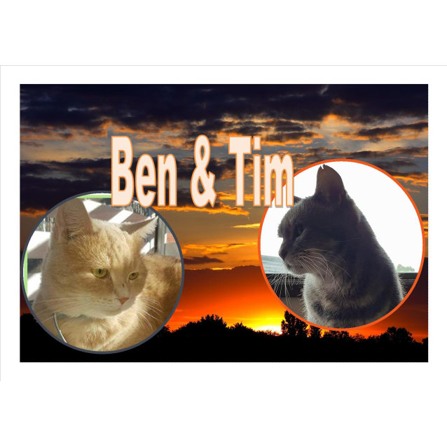 Photo of Ben & Tim