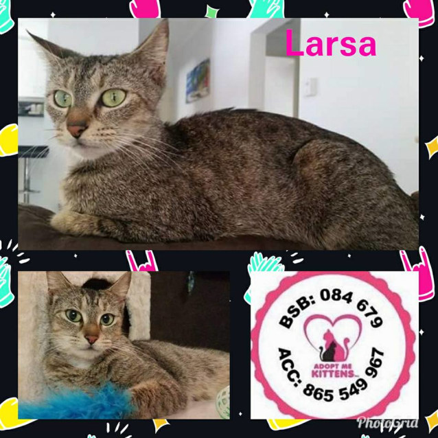Photo of Larsa