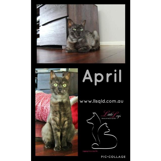 Photo of April