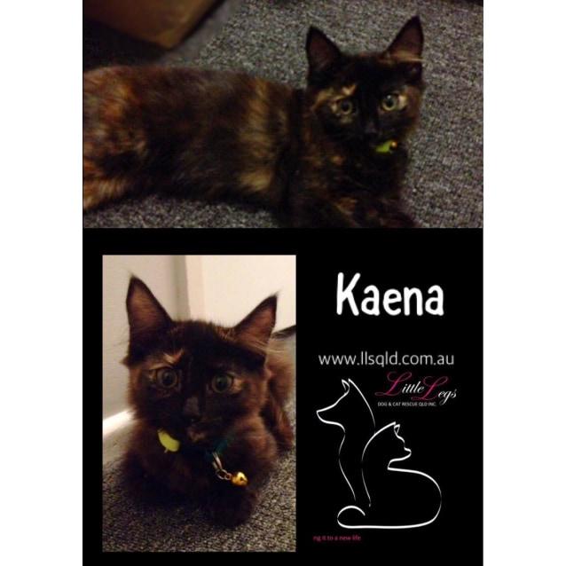 Photo of Kaena
