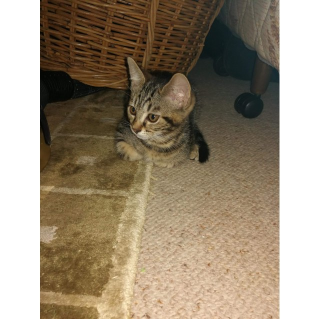 Photo of Naboo