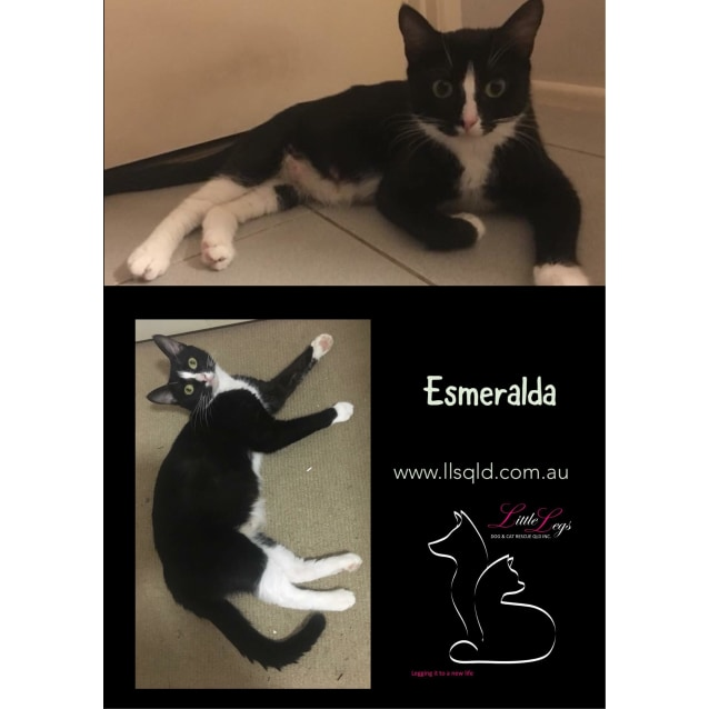Photo of Esmeralda
