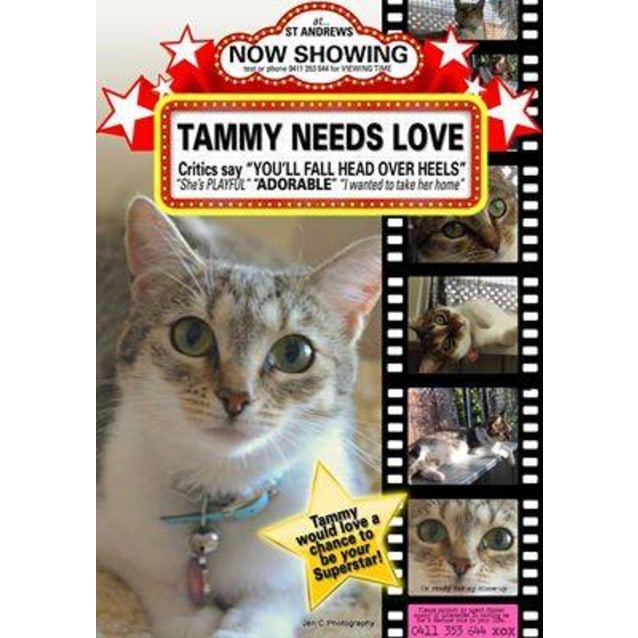 Photo of Tammy   No Red Carpet Required