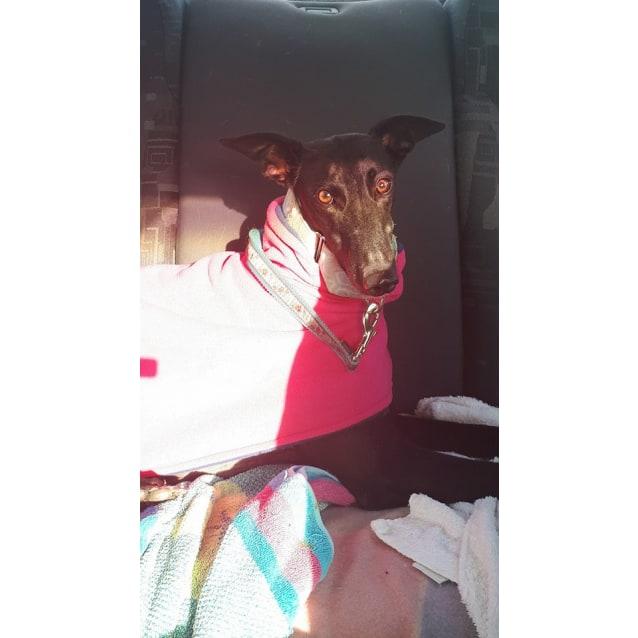 Photo of Maddie