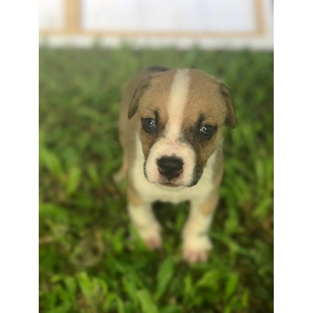 Photo of Kenai