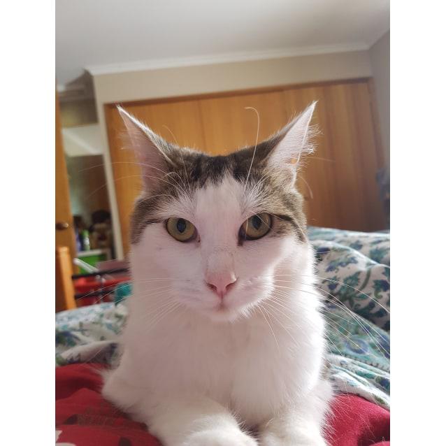 Photo of Flo