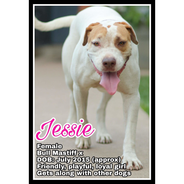 Photo of Jessie