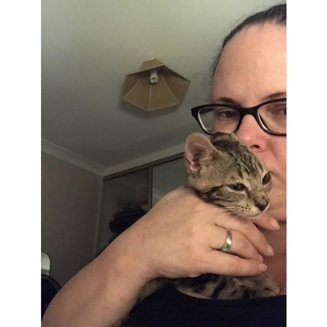 Photo of Dobby & Gremlin
