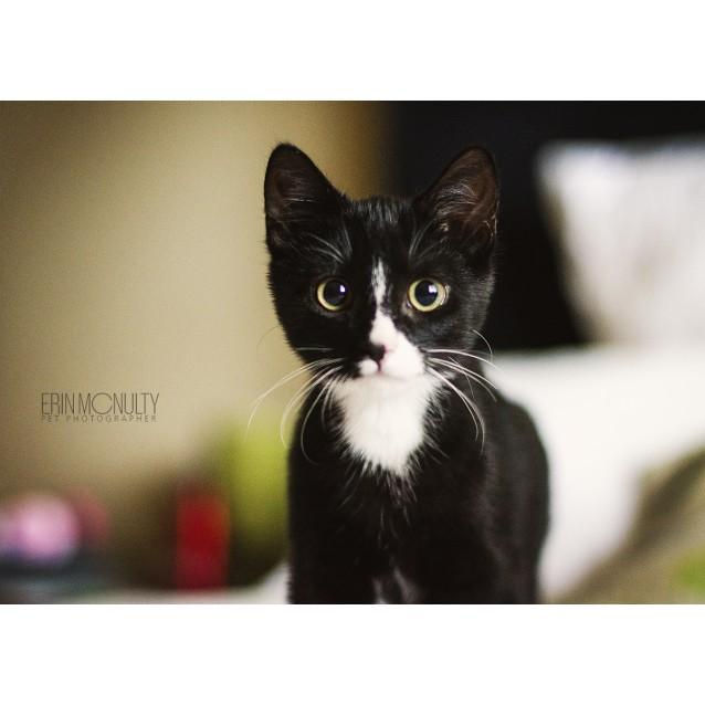 Photo of Rupert